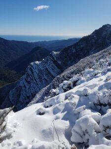 Snow closes Paparoa Track!